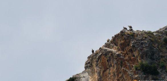 Mirador del Buitre – Arnedillo – La Rioja