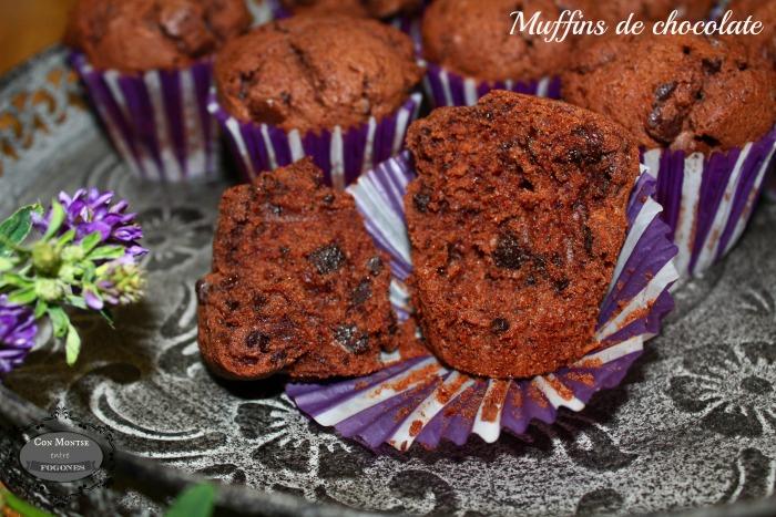 Muffins de chocolate I