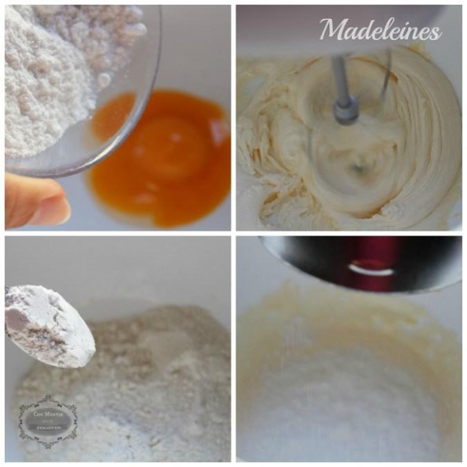 madeleines-ii