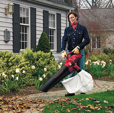 Do you own a leaf blower or a water fountain?