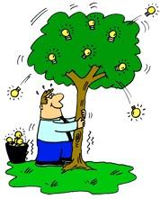 shake a tree