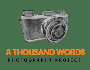 thousand-words-logo