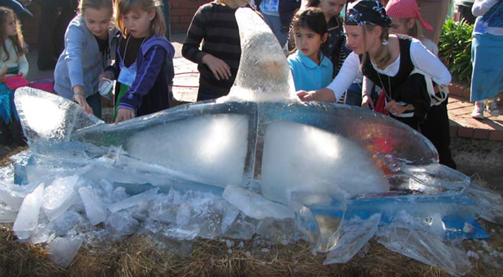 ice carving of dolphin by Mark Trinham