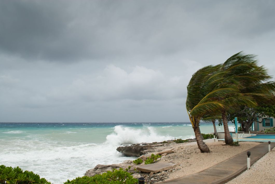 Bluecarbon-coastal storm-shutterstock_662161621-1920-80