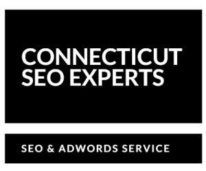Local SEO Services | Google AdWords & Analytics Certified Consultant