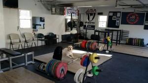 Team CT gym 1