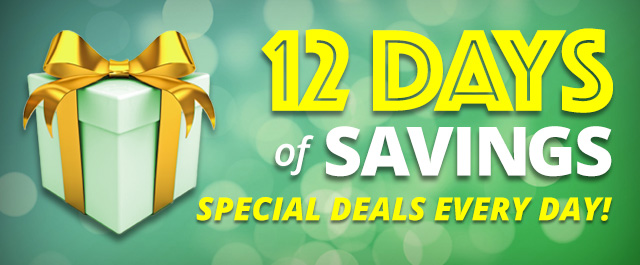 12 days savings 2017 day 1 ASUS VivoBook X541N sale bargain holiday Christmas gifts Connecting Point Medford OR