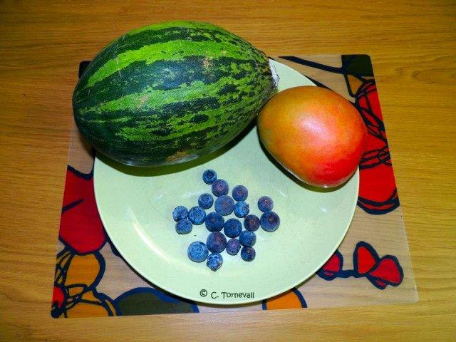 2014-03-15 Vitalisera immunförsvaret Juicer till blogg