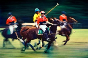 Polo, Horses, Mounts, Men, Players, SAMLIM