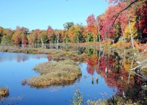 Mud Lake on the Northville-Lake Placid Trail