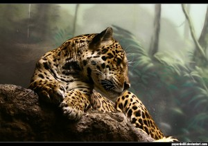 jaguar by paperdollll via DeviantArt.com