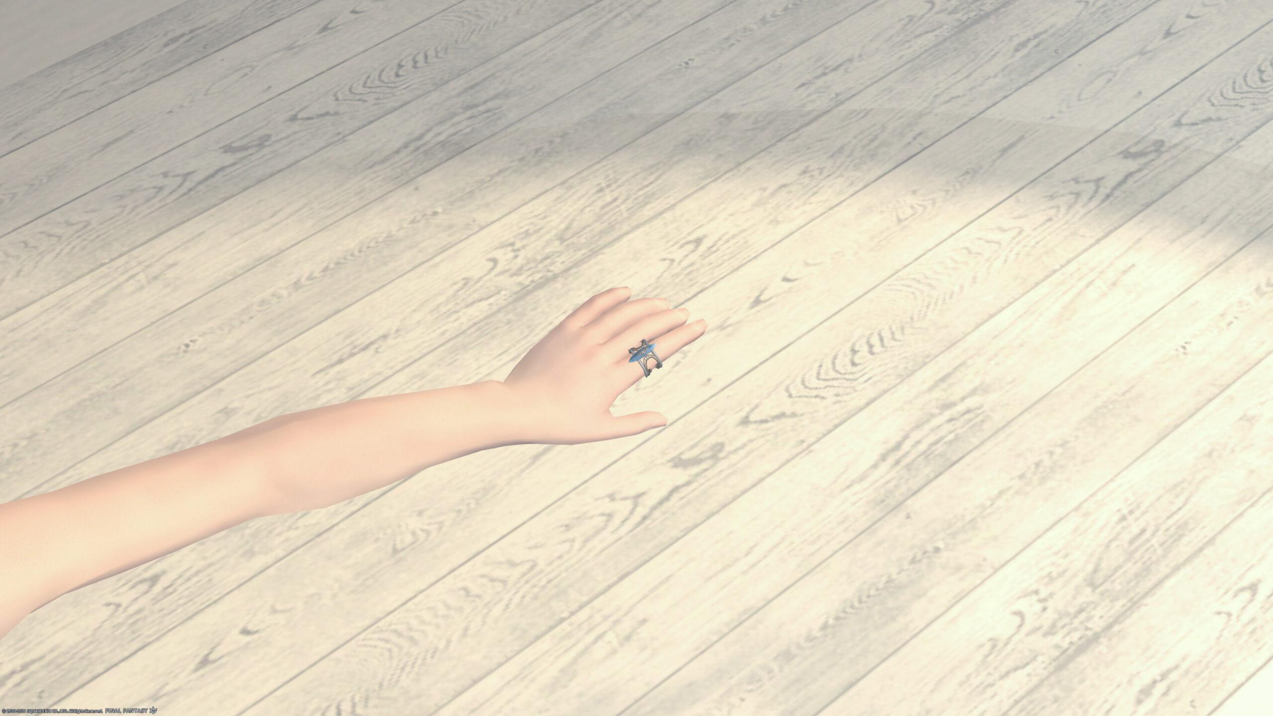 エデンゲート指