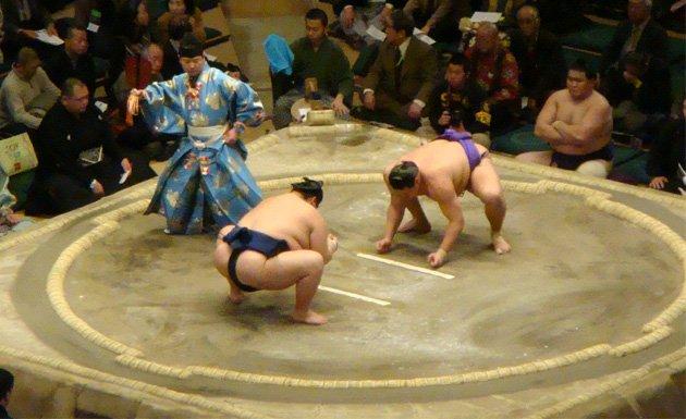 Pelea de sumo