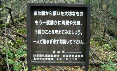 Aokigahara 4
