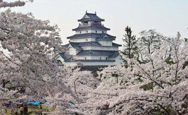 castillo de Wakamatsu