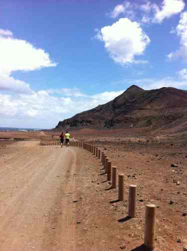 Protecciones de madera de la pista de tierra