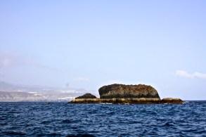 Roque Matavinos o Tortuga