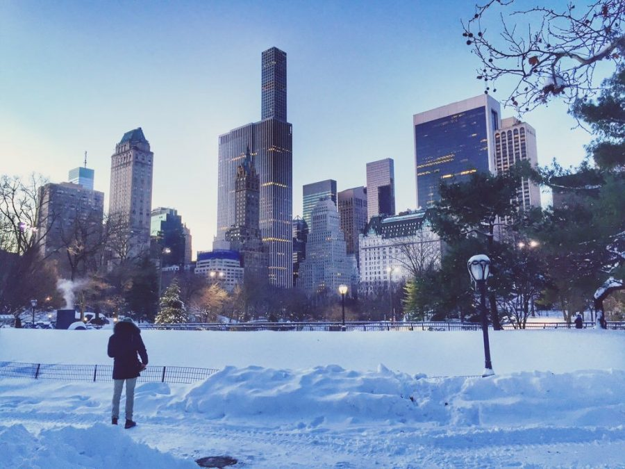 Central Park Foto: @julieverhage