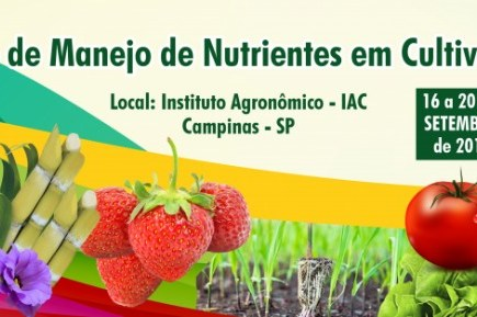 Visando a Sustentabilidade do Agronegócio brasileiro.