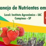 MNCP - Manejo de Nutrientes em Cultivo Protegido