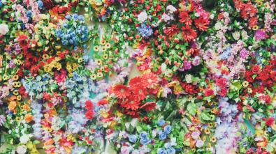 unsplash flowers