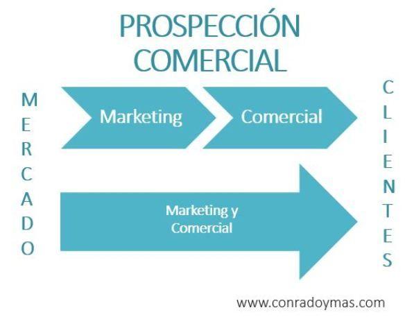 Prospección Comercial: Organización Entre Marketing Y Comercial