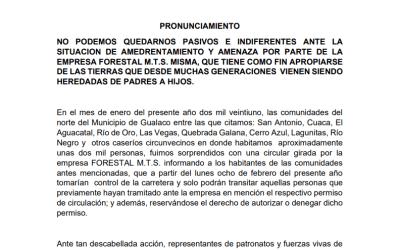 Pronunciamiento ante la situación de amedrentamiento y amenaza por parte de la empresa forestal M.T.S.