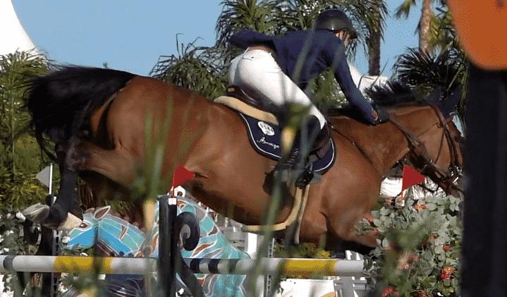 Oliva Nova será de nuevo la sede del Mediterranean Equestrian Tour (MET Oliva)