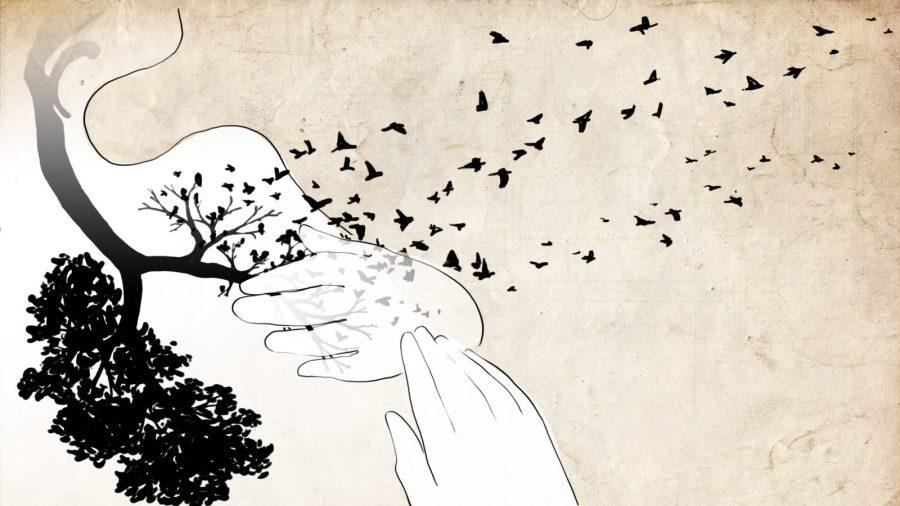 02_lungsbirds-1600x900