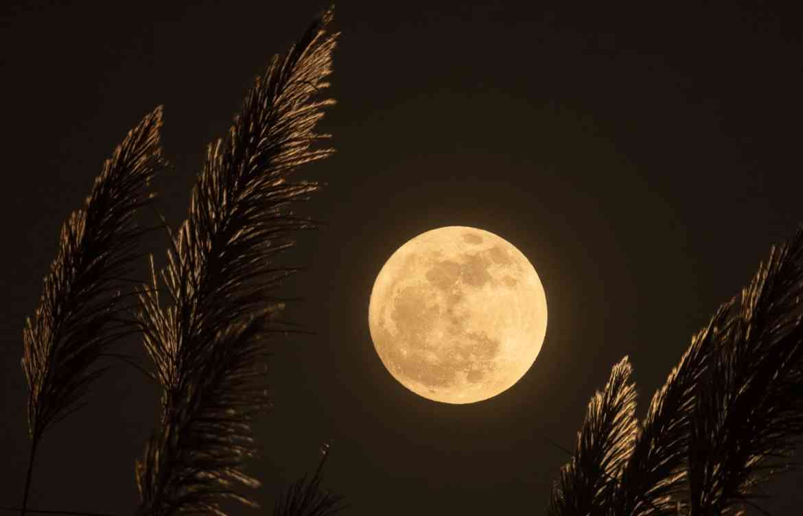 Full moon over fied of harvest wheat | What am I harvesting: Acts of belonging for Full Moon in Aries | Conscious Content
