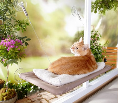 Sunny Seat Cat Bed Review