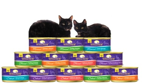 Allegra and Ruby Wellness canned cat food