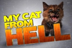 My Cat from Hell Animal Planet Jackson Galaxy