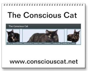 Conscious Cat calendar cover