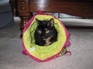 Petstages Cuddle Coil cat