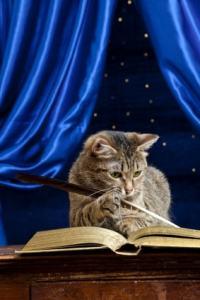 cat writing book