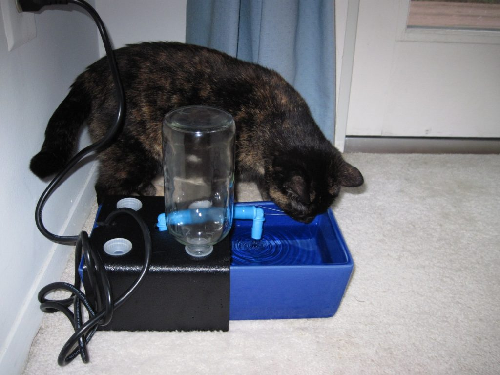 Review Glacier Point Cat Fountain