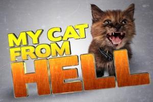 my cat from hell jackson galaxy