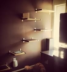 cat_shelves