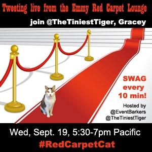 RedCarpetCat Emmy