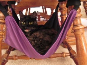 Ruby_Cat_Crib_hammock