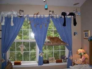 in home cat boarding