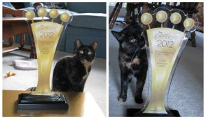 2012_Pettie_Award_Best_Cat_Blog