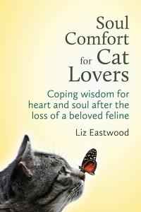 Soul_Comfort_for_Cat_Lovers