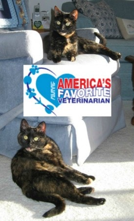 America's Favorite Veterinarian
