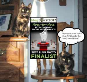 BlogPaws Nose to Nose Awards