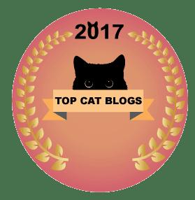 top-cat-blog