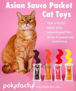 catnip_cat_toys