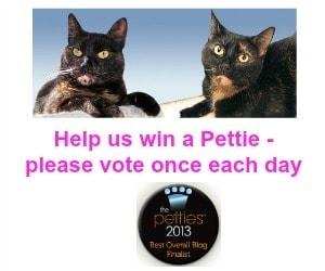 2013_Pettie_Best_Pet_Blog