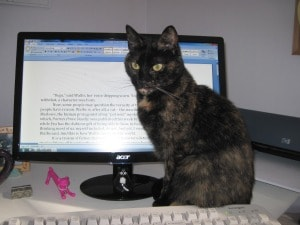cat_with_computer